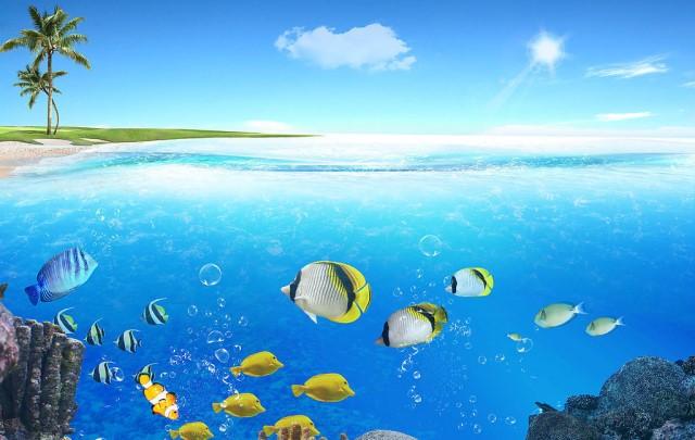 中国新增9个国家海洋公园