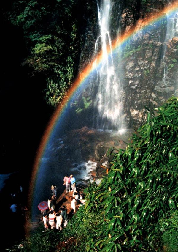 壁纸 风景 旅游 瀑布 山水 桌面 600_848 竖版 竖屏 手机