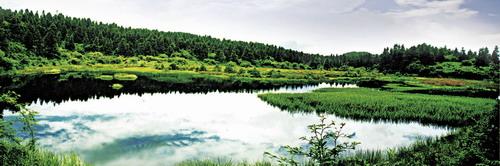 南天湖位于丰都县城东南45公里,面积达100平方公里的群山和林海之间.