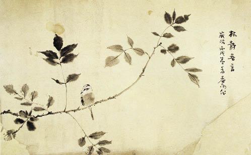 迎春花叶子的简笔画  (600x376);